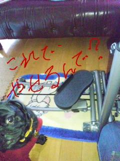 moblog_39014ed1.jpg