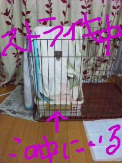 moblog_4d2d398b.jpg