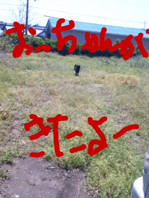 moblog_b7bed72e.jpg