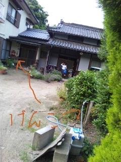 moblog_d4bf55c5.jpg