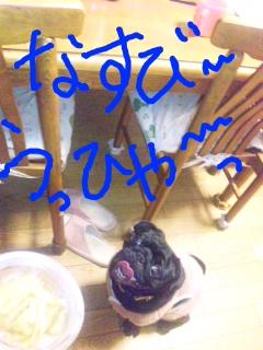 moblog_f28e59f5.jpg