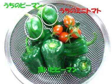 FC3-159b_20080903214915.jpg