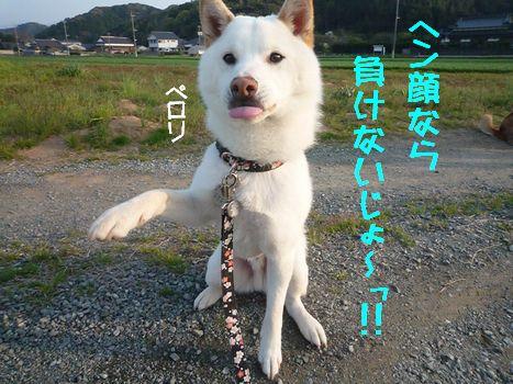 ぱくっ05
