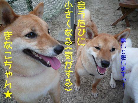おともだち紹介~♪06