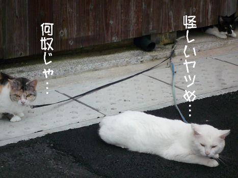 恐怖の...02