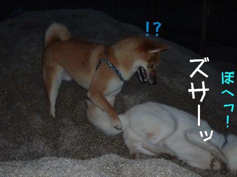 試運転餃子 あじズサーッ!