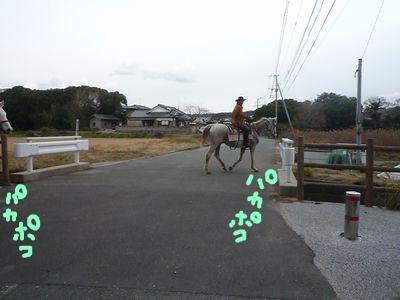 snap_nobirumaruajinikkori_200910182114.jpg