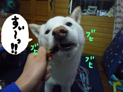 snap_nobirumaruajinikkori_200911224251.jpg