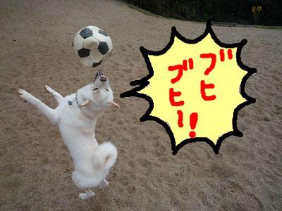 snap_nobirumaruajinikkori_200915225426.jpg