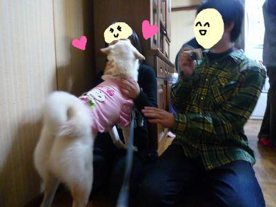 snap_nobirumaruajinikkori_200916145647.jpg