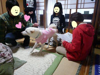 snap_nobirumaruajinikkori_2009161593.jpg