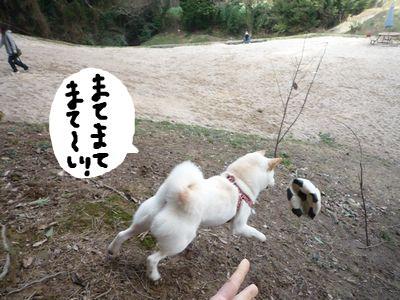 snap_nobirumaruajinikkori_200924215021.jpg