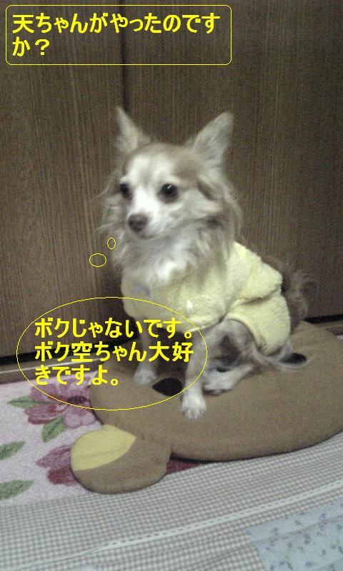 Image232.jpg