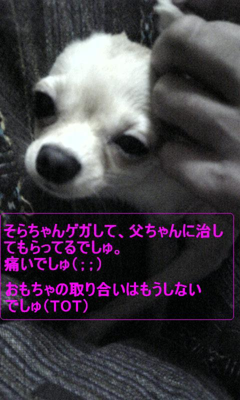 Image238.jpg
