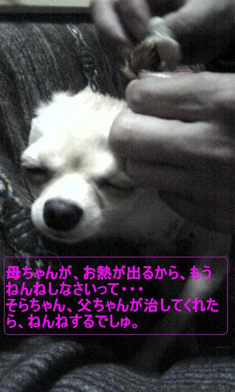 Image239.jpg