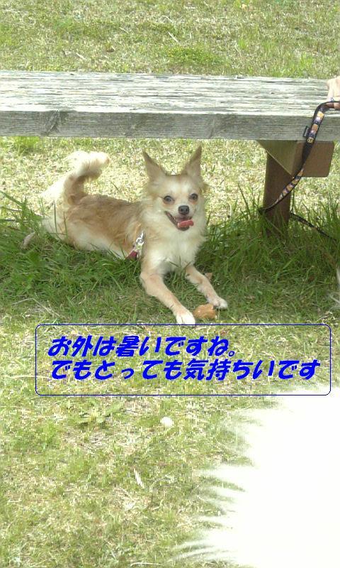 Image578.jpg