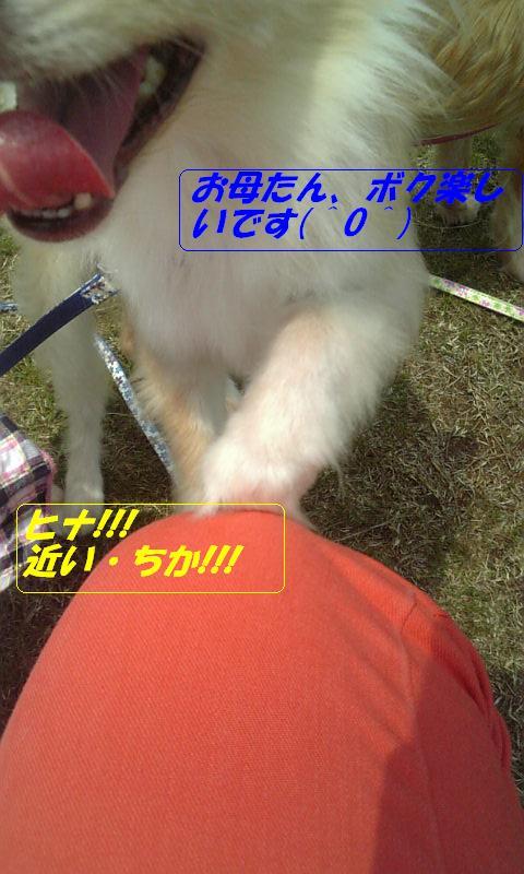 Image579.jpg