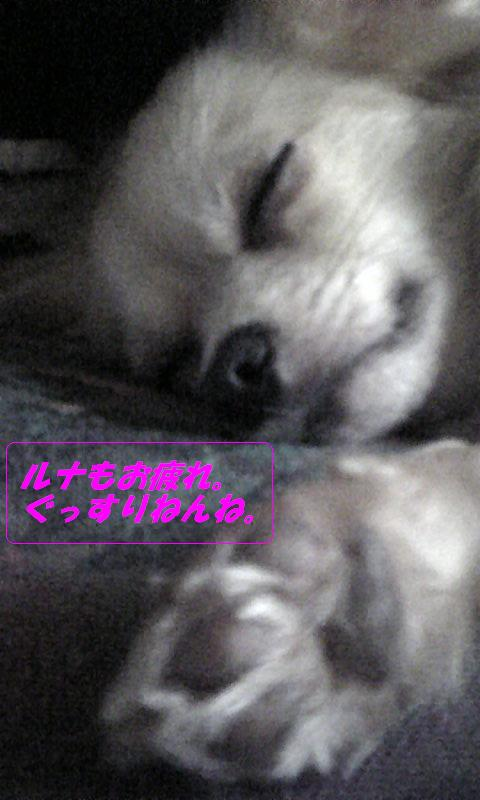 Image586.jpg