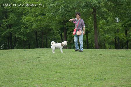 20110513-_MG_4642.jpg