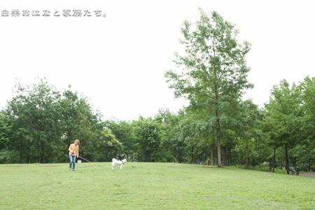 20110527-_MG_6802.jpg