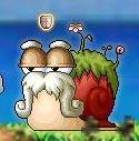 Maple0610.jpg