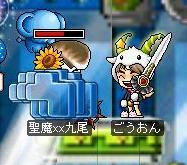 Maple0683.jpg