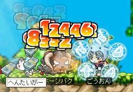 Maple0717.jpg