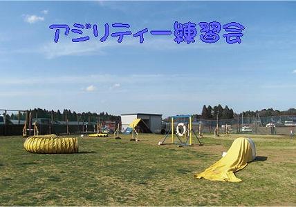 2009032901.jpg