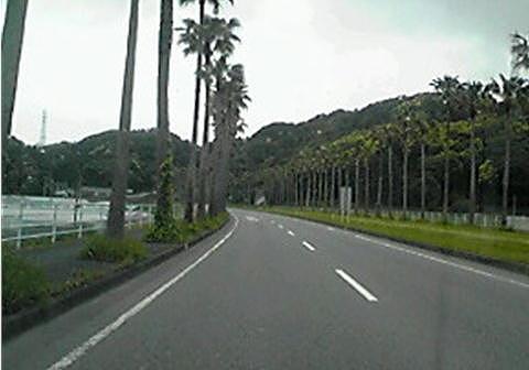 2009050704.jpg