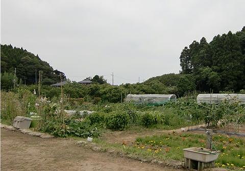 2009071410.jpg