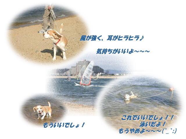 20050604s.jpg