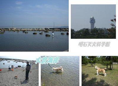 2006・05・21大倉海岸