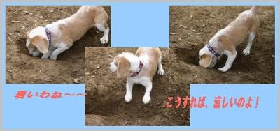 2007・01・22・3