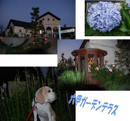 2007・08・12・1