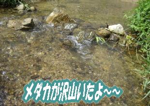 2007・08・27・2