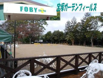 2008・02・24宝塚ガーデンフィールズ1