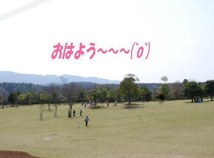 2008・04・13一庫公園3