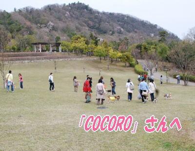 2008・04・13一庫公園5