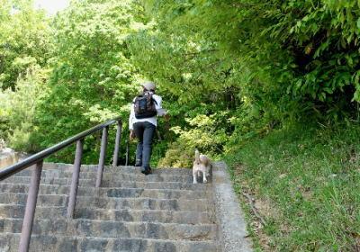 2008・05・04ハイキング1