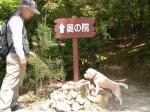 2008・05・04・ハイキング6
