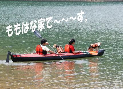 2008・08・10九頭竜湖7
