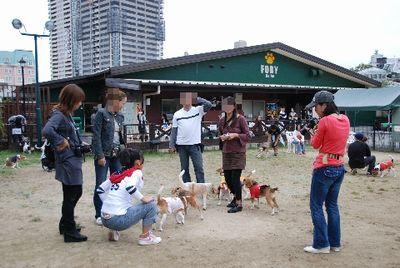 2008・09・28・ラン