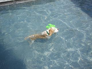swiminig