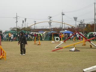 2006・11・26・1