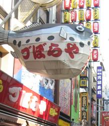 20081222_06.jpg