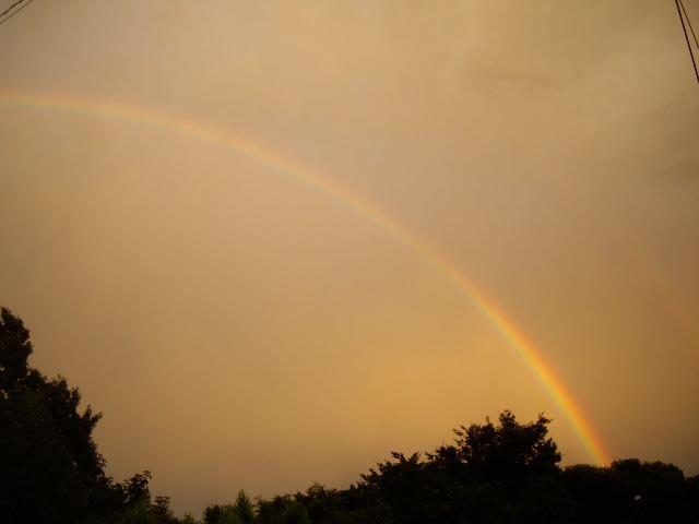 虹を見たよ
