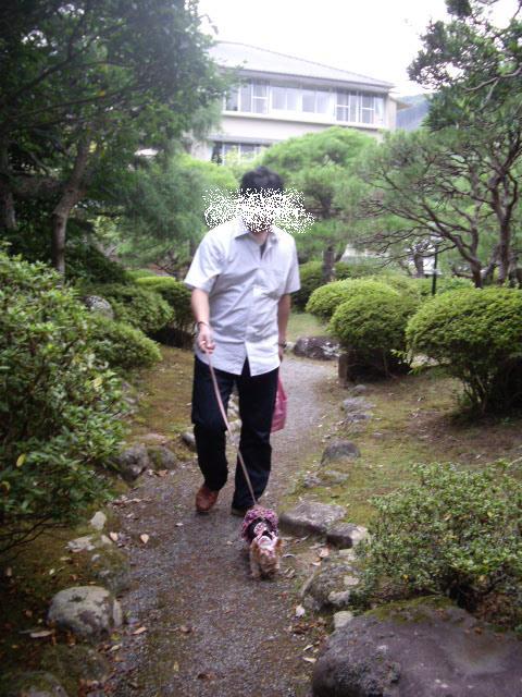 コピー ~ 珍しくパパとお散歩