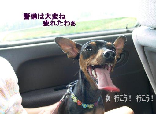 bokujyou-sora3.jpg