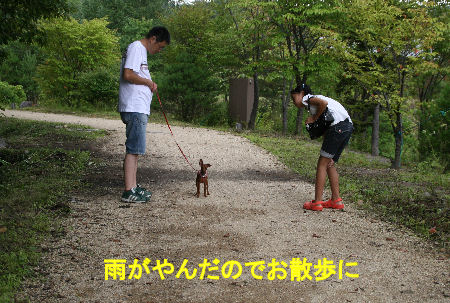 fukushima20.jpg