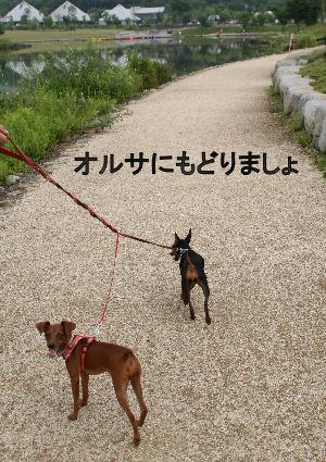 fukushima32.jpg